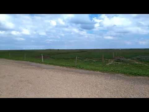 A trip to Gibraltar Point Nature Reserve in Lincolnshire, overlooking the Wash. Film by www.naturesi