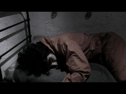 How To Survive Interrogation