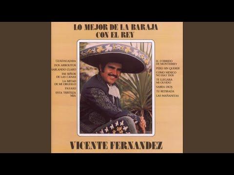 Las Mañanitas Vicente Fernández Letras Com
