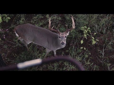 Bloodline | Whitetail Deer Hunting Film – Mossy Oak