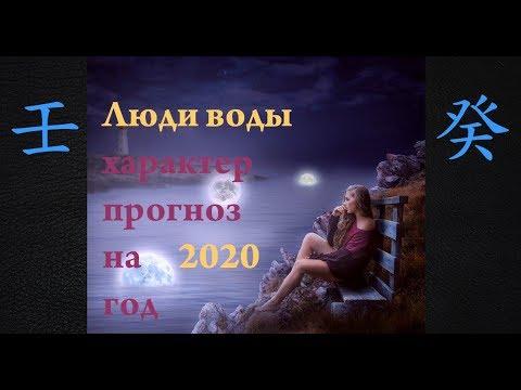 БАЦЗЫ. Прогноз на 2020 год для людей Воды. Господин Дня Вода Ян или Инь