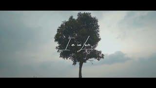 Download Lagu Reza Darmawangsa - I'm In Love (Lyrics Video) mp3