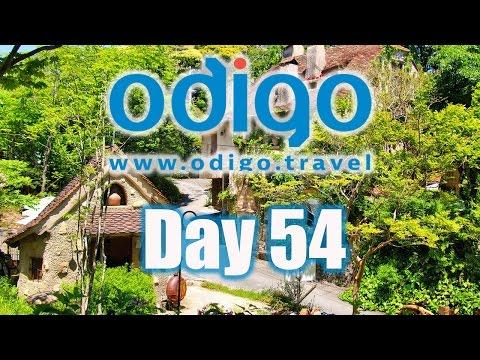 Shizuoka Vlog: Nukumori Forest & Hamamatsu Flower Park [Ft. Rachel and Jun, Moe Style & OkanoTV]