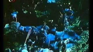Bitva s Lučany / Battle with the Luczans