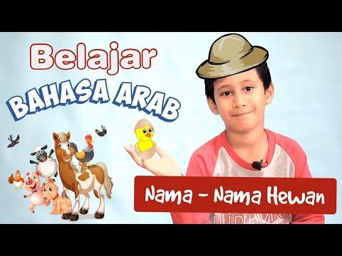 Syairan Sunda & Nadzoman AL-FIYAH IBN MALIK Pikeun Bibi Santri 😆    lirik sunda #ZhaaFth from YouTube · Duration:  3 minutes 19 seconds