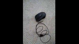 Dandik Mouse Fetiş Testi