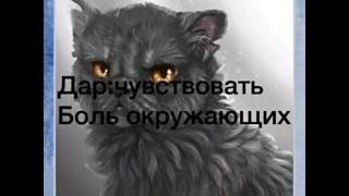 Коты с супер способностями