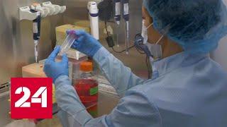 Смотреть видео Технологии будущего: в МГУ проходит масштабный конгресс по регенеративной медицине - Россия 24 онлайн