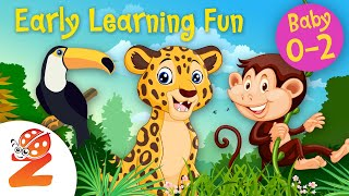 Early Learning Fun #9 | Animals of the Jungle Part 2 🐵🐊 Educational Series