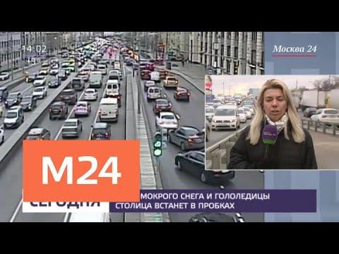 Москвичей попросили отказаться от использования личного транспорта - Москва 24