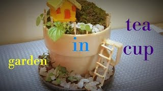 Miniature garden in tea cup. A garden is creating in small tea cup ...