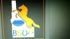 Black Ops Emblem:  Boise State University Logo