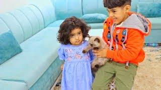 زياد يفاجأ ليلى بالقطه الجديده