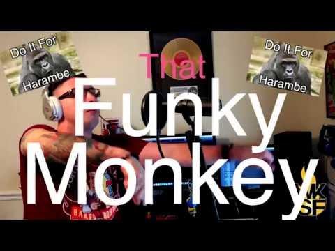 White Kid Spits Fire - Brass Monkey (remix)