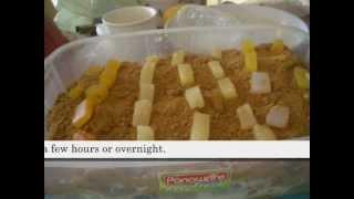 graham cake recipe