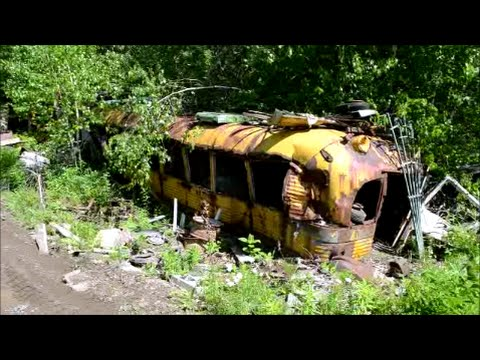 RUSTED OLD SCHOOL BUSES IN QUEBEC SALVAGE YARD