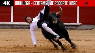 Imagen del video: RECORTES: Concurso de Brihuega