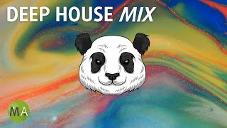 Upbeat Study Music Deep House Mix for Peak Focus - Isochronic Tones
