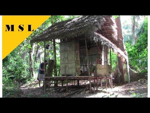 Dschungel Bushcraft Survival, Hütte Bauen – Jungle Survival, Building a Hut 3