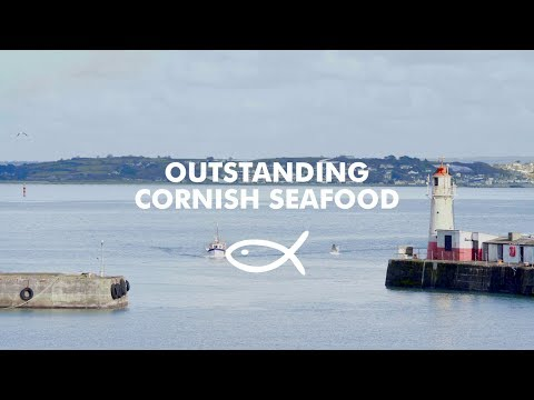 Outstanding Cornish Seafood Delivered To Your Door