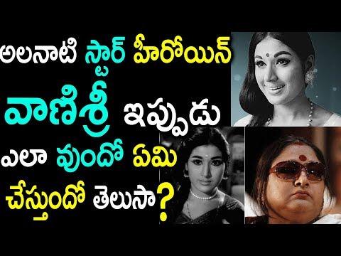 నటి వాణిశ్రీ ఎప్పుడు ఎలాఉందో ఏంచేస్తుందో తెలుసా..? | Senior Actress Vanisri Present Situation