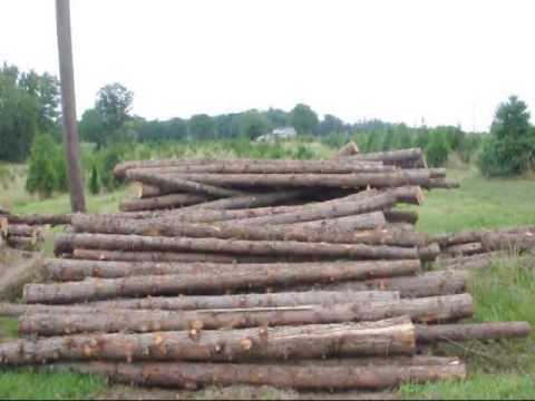 Cedar Posts We Have For Sale In Bucks County Pa Near