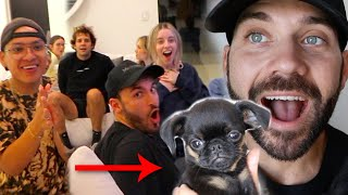 SURPRISING FRIENDS WITH MY NEW PUPPY!!