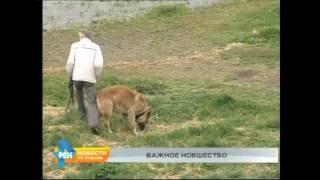 Автоматы с пакетами для уборки за животными установили в Иркутске(, 2016-06-06T06:27:14.000Z)
