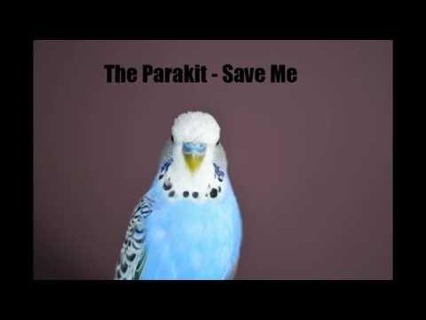 The Parakit   Save Me lyrics