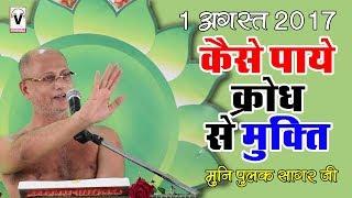 कैसे पाये क्रोध से मुक्त्ति | Kaise paye krodh se mukti by Muni Pulak Sagar