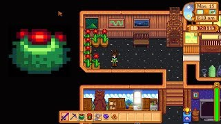 How To Grow Cactus Indoors Stardew Valley Herunterladen