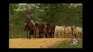 Perfil Agropecuario Domingo 25 Junio -  Asamblea Anual de Fedeagro 2017