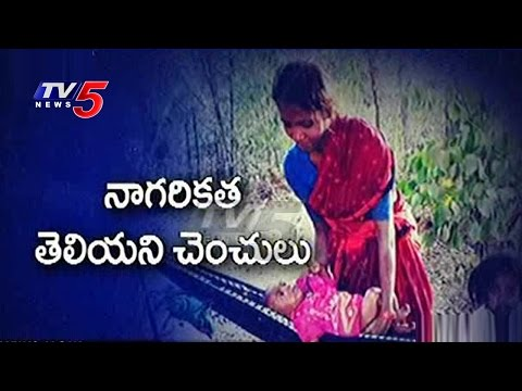 Chenchu Tribe in Trouble | Special Focus on Chenchus | Telugu News | TV5 News