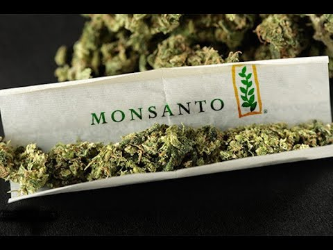 "Flat Earth Research 101: ""The World According to Monsanto"" - GMO Documentary"