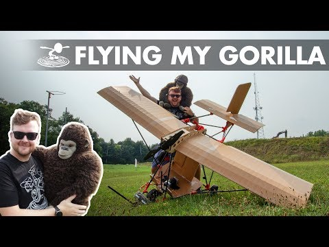 Sending my Gorilla to the Blue Yonder