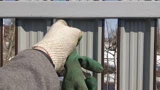 Забор в СНТ Ягринское. Быстрый обзор, вид изнутри. Профлист и металлический штакетник.