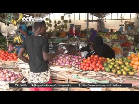 Djibouti, the mixture Somali, Ethiopian, French and Arab cultures
