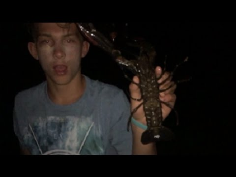HOW TO CATCH GIANT FRESH WATER CRAYFISH!