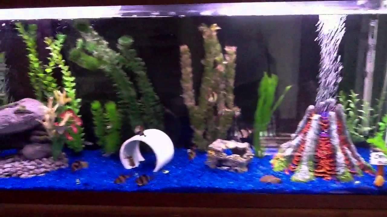 Fish tank volcano - New Volcano Bubbler