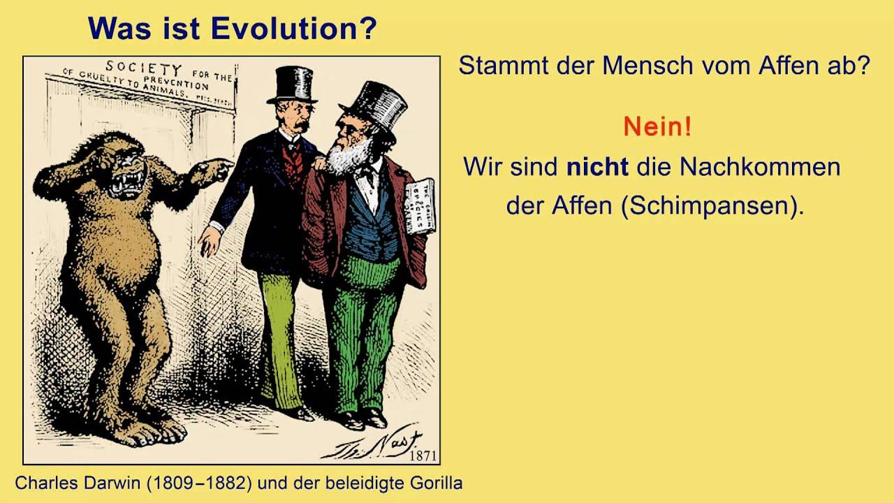 Was Ist Kreationismus