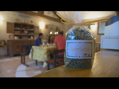 You are here - France's Provence region, where herbs are king