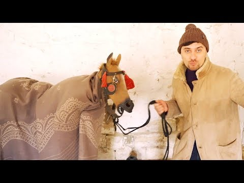 Calul nostru sufera din dragoste.