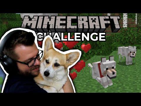 Wer gewinnt die LIEBE der HUNDE? | Minecraft Challenge