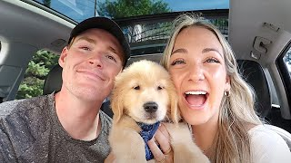 WE GOT A PUPPY | bringing home our 8 week golden retriever!!