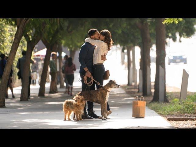 Par amour des chiens - Au cinéma dès le 10 août