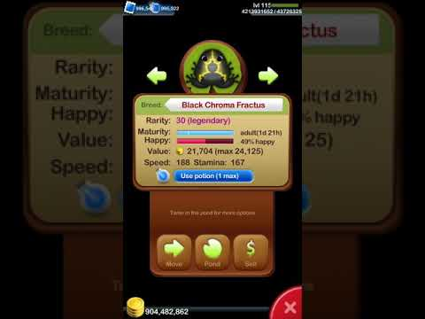 Pocket Frogs (GIVEAWAY!)