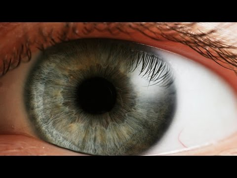The Responsibility for Sight. Teachings from A Course in Miracles