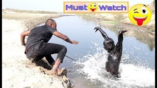 Must Watch Funny😂😂Comedy Videos 2019 Episode -38 || Bindas fun ||