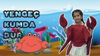 Yengeç Kumda Dur Çocuk Şarkısı - Onur Erol