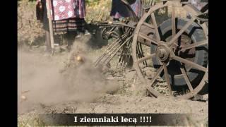 Święto Ziemniaka.Muzeum Wsi Radomskiej.2.10.2011 r.